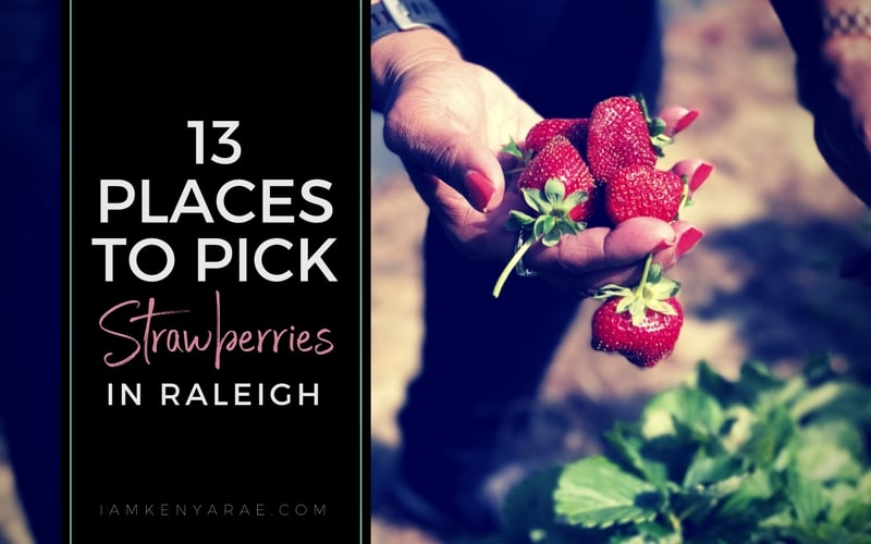 13 Of The Best Strawberry Picking Farms In Raleigh N C